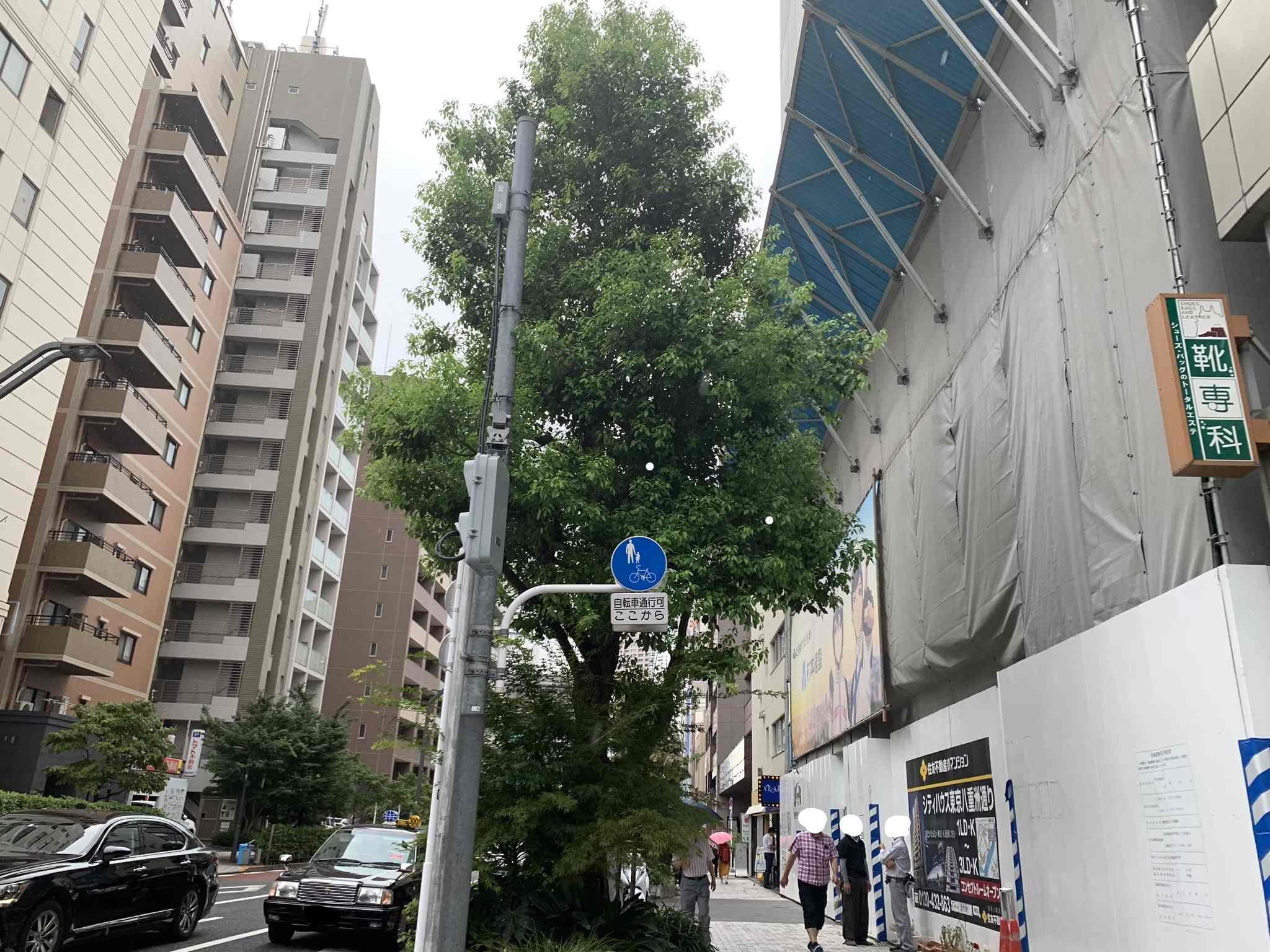 シティハウス東京八重洲通りの現地